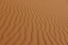 Areia Rippled Imagem de Stock
