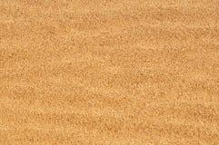 Areia seca Fotos de Stock