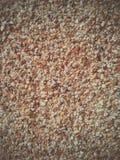 A areia textures o fundo Fotografia de Stock