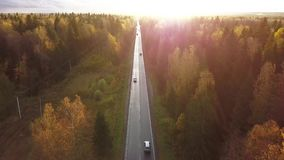 Areial view of a busy long straight road through a colorful autumn forest at sunset. 4k stock video footage