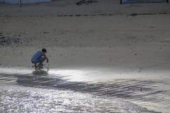 Areias cintilantes Fotos de Stock Royalty Free