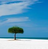 Areias do céu de Langkawi Fotografia de Stock
