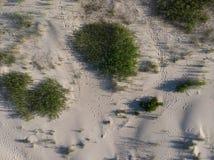 Areias do Seascape no litoral ao mar foto de stock
