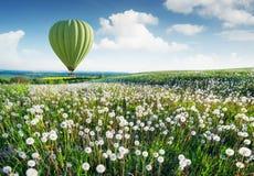 Areje o campo acima do ballon com as flores nas horas de verão imagem de stock royalty free