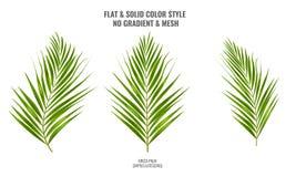 Areki palmowy nakreślenie lub akwarela styl rysuje ręcznie Palmowy liść dla twój projekta również zwrócić corel ilustracji wektor ilustracji