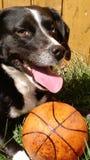 Arella и ее баскетбол стоковые фотографии rf