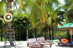 Arena blanca de Sun y palmeras verdes imagenes de archivo