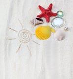 Arena con el shell del mar Fotos de archivo libres de regalías