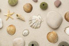 Arena de la playa del mar Imagenes de archivo