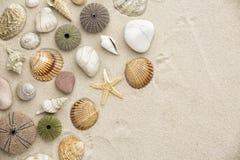 Arena de la playa del mar Fotografía de archivo