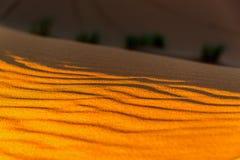 Arena del desierto del Sáhara Fotos de archivo
