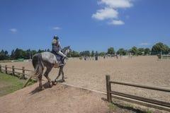Arena del Equestrian del cavaliere del cavallo fotografia stock libera da diritti