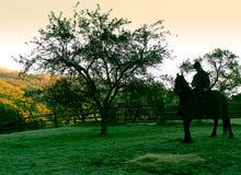Arena del paisaje y jinete amarillos de los árboles Imagenes de archivo
