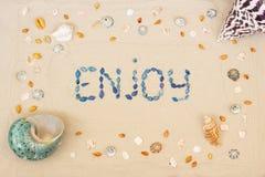 Arena en la playa en verano, la inscripción gozar de las cáscaras en la arena Endecha plana Visi?n superior fotografía de archivo libre de regalías