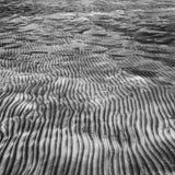 Arena en mis dedos del pie Imagen de archivo libre de regalías