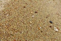 Arena gruesa en la playa de Mirissa Imagen de archivo