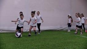 Arena interna do futebol Crianças que jogam o futebol Um rapaz pequeno conduz a bola video estoque
