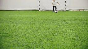 Arena interna do futebol O rapaz pequeno conduz a bola apenas vídeos de arquivo