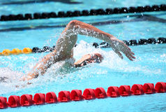 A arena internacional da reunião de XXIIIe da natação Imagem de Stock Royalty Free