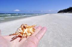 Arena, playa, mar, cielo. Foto de archivo libre de regalías