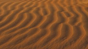 Arena roja en el desierto almacen de video