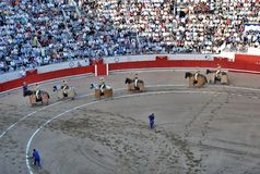Arena for Spanish bullfighting Royalty Free Stock Photos