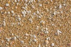 Arena y fondo del shell Fotografía de archivo