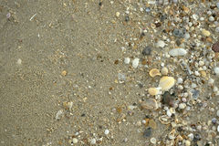 Arena y shell Imágenes de archivo libres de regalías