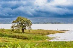 Arenal λίμνη λιμνοθαλασσών στα βήματα του ηφαιστείου Arenal στη πλευρά Ρ Στοκ φωτογραφίες με δικαίωμα ελεύθερης χρήσης