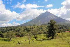 Вулкан Arenal, Коста-Рика Стоковые Фото