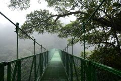 Arenal, Costa Rica-January 2, 2018: Mistico Arenal Hanging Bridges Park stock photo