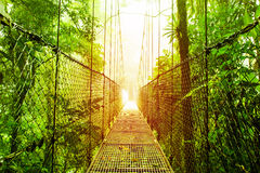 Arenal Hanging Bridges park of Costa Rica Royalty Free Stock Photos