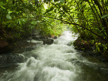 Arenal Hot Springs Royalty Free Stock Photography