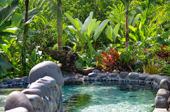 Arenal Hot Springs Royalty Free Stock Image
