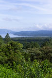 Arenal lake and rainforest Royalty Free Stock Photography