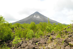 Arenal Volcano, Costa Rica. Arenal Volcano in Costa Rica with trees and lava field in the foreground Royalty Free Stock Photography