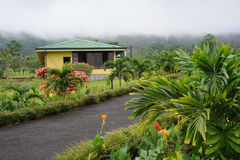 Arenal volcano park Stock Images