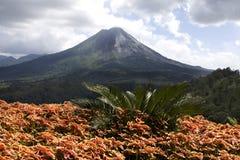 Arenal Vulkaan I Stock Afbeeldingen
