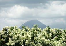 arenal wulkan kostaryka Obraz Stock