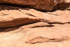 Arenaria corrosa Fotografia Stock