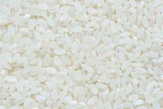 Arenas asperjadas del arroz. fotos de archivo
