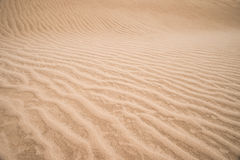Arenas del desierto Imágenes de archivo libres de regalías