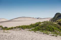 Arenas en Joaquina Beach Fotos de archivo