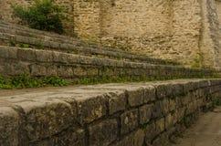 Arenes de Lutece古老遗骸在巴黎 免版税库存照片