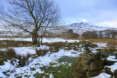 Arenig Fach winter view Royalty Free Stock Photo