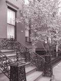Areniscas de color oscuro de Brooklyn Fotos de archivo libres de regalías