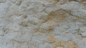 Arenito de pedra de Istebna do fundo da textura Imagem de Stock