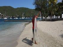 Arenque pequeno de travamento em uma praia nas Caraíbas filme