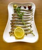 Arenques bálticos del espadín de los pescados crudos con el limón y verdes en la placa blanca Fotografía de archivo