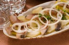 Arenques con una patata hervida. imagen de archivo libre de regalías